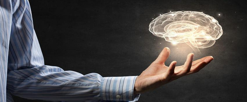 E-Learning Brain.jpeg